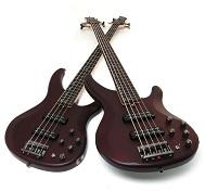 bass meets bass